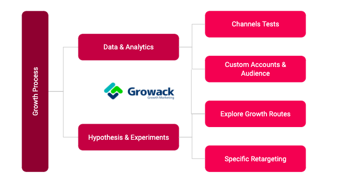 Integrated Growth Process